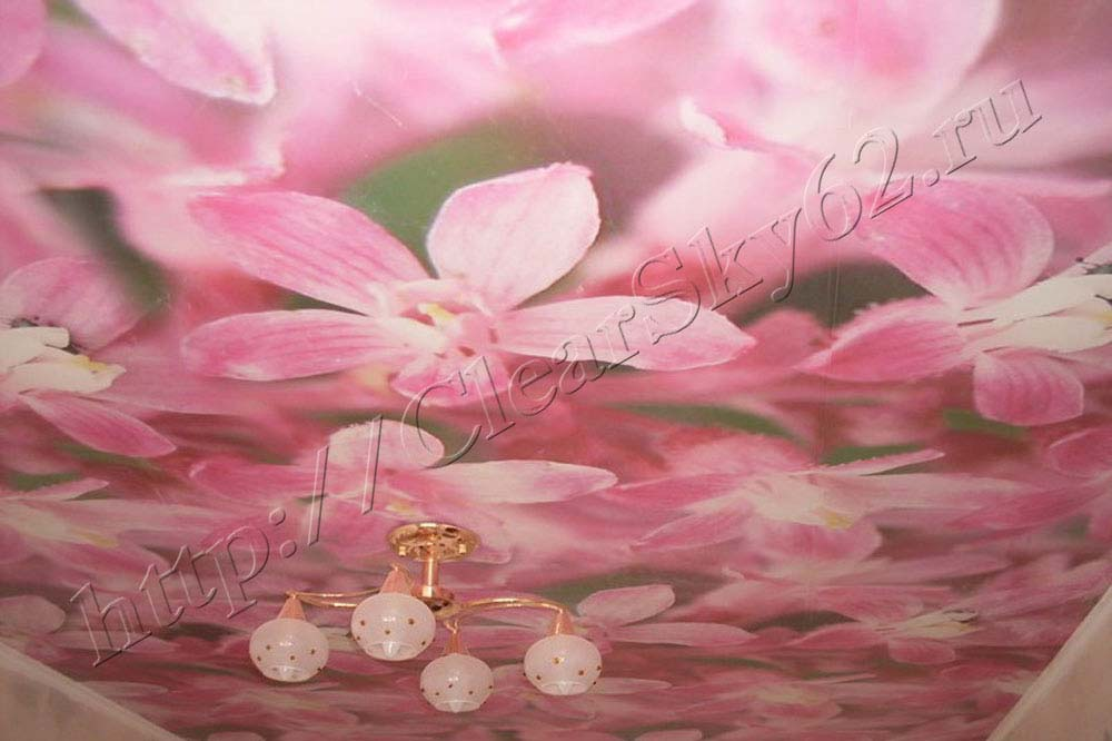 Натяжные потолки фотопечатью цветы